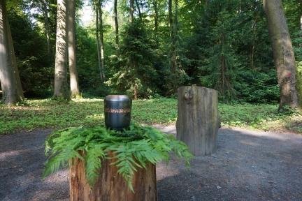 DSC00859_Urne auf Baumstumpf